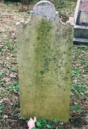 PHILIPS, CHARLOTTE - Davidson County, Tennessee | CHARLOTTE PHILIPS - Tennessee Gravestone Photos