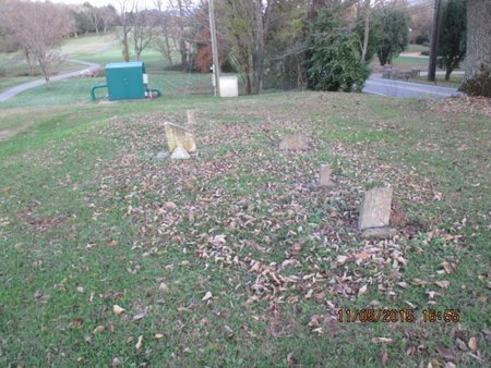 *SAWYER OVERVIEW 2,  - Davidson County, Tennessee |  *SAWYER OVERVIEW 2 - Tennessee Gravestone Photos