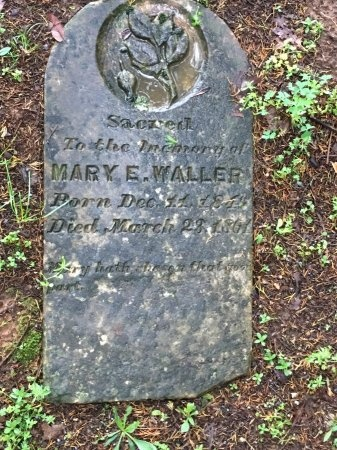 WALLER, MARY E. - Davidson County, Tennessee | MARY E. WALLER - Tennessee Gravestone Photos