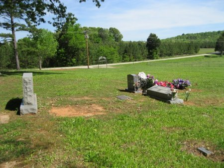 *CEMETERY VIEW,  - Decatur County, Tennessee |  *CEMETERY VIEW - Tennessee Gravestone Photos