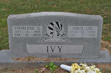 IVY, ODUS LEE - Fayette County, Tennessee | ODUS LEE IVY - Tennessee Gravestone Photos