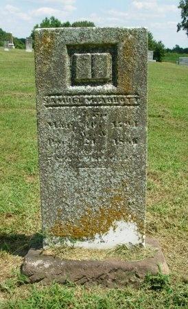 ABBOTT, SAMUEL M. - Gibson County, Tennessee   SAMUEL M. ABBOTT - Tennessee Gravestone Photos