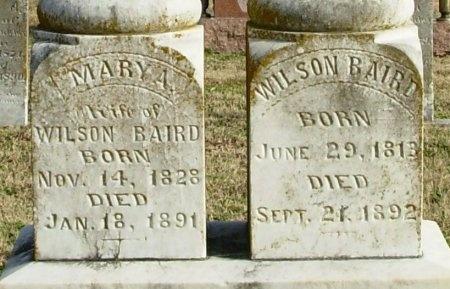BAIRD, MARY ANN (CLOSE UP) - Gibson County, Tennessee | MARY ANN (CLOSE UP) BAIRD - Tennessee Gravestone Photos