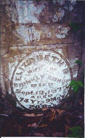 BISHOP, ELIZABETH B. - Gibson County, Tennessee | ELIZABETH B. BISHOP - Tennessee Gravestone Photos
