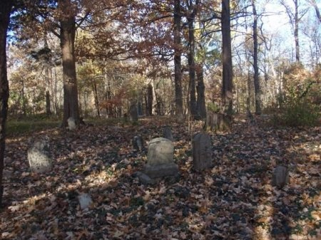 *CEMETERY VIEW,  - Gibson County, Tennessee |  *CEMETERY VIEW - Tennessee Gravestone Photos