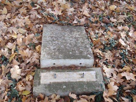 GRIFFIN HAMILTON, SIBELLA - Gibson County, Tennessee | SIBELLA GRIFFIN HAMILTON - Tennessee Gravestone Photos