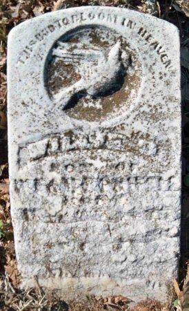 "POWELL, WILLIAM DAVID ""WILLIE"" - Gibson County, Tennessee | WILLIAM DAVID ""WILLIE"" POWELL - Tennessee Gravestone Photos"