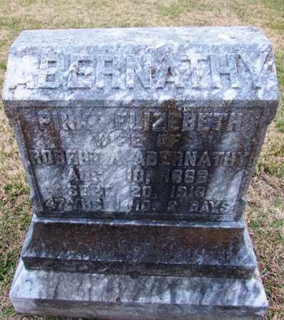 ABERNATH;Y, PINK ELIZABETH - Giles County, Tennessee | PINK ELIZABETH ABERNATH;Y - Tennessee Gravestone Photos