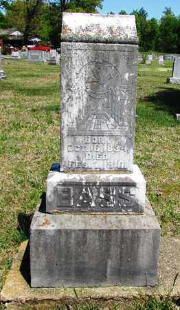 BASS, W.H. - Giles County, Tennessee | W.H. BASS - Tennessee Gravestone Photos