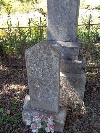 BUTLER, SARAH A. - Giles County, Tennessee | SARAH A. BUTLER - Tennessee Gravestone Photos
