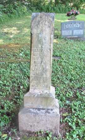 JOHNSON, ELIZA J. - Giles County, Tennessee | ELIZA J. JOHNSON - Tennessee Gravestone Photos