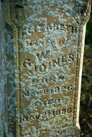 JOINES, ELIZABETH (CLOSE UP) - Giles County, Tennessee | ELIZABETH (CLOSE UP) JOINES - Tennessee Gravestone Photos
