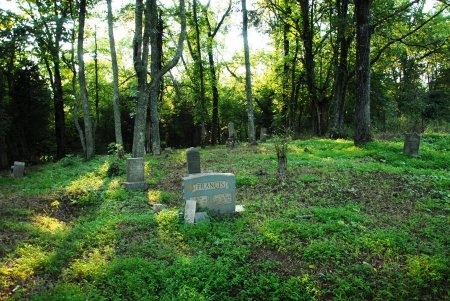 *JOINES OVERVIEW,  - Giles County, Tennessee |  *JOINES OVERVIEW - Tennessee Gravestone Photos
