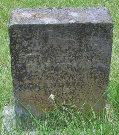 MCCOFFEY, ROBERT R. - Giles County, Tennessee | ROBERT R. MCCOFFEY - Tennessee Gravestone Photos