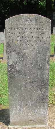 NOBLIT, ORLENA - Giles County, Tennessee   ORLENA NOBLIT - Tennessee Gravestone Photos