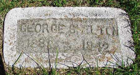 SHELTON, GEORGE - Giles County, Tennessee   GEORGE SHELTON - Tennessee Gravestone Photos