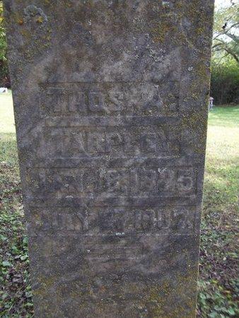 TARPLEY, THOMAS A. - Giles County, Tennessee   THOMAS A. TARPLEY - Tennessee Gravestone Photos