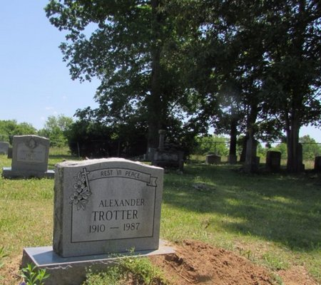 TROTTER, ALEXANDER - Giles County, Tennessee | ALEXANDER TROTTER - Tennessee Gravestone Photos