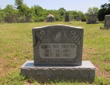 TROTTER, JAMES ROY - Giles County, Tennessee | JAMES ROY TROTTER - Tennessee Gravestone Photos