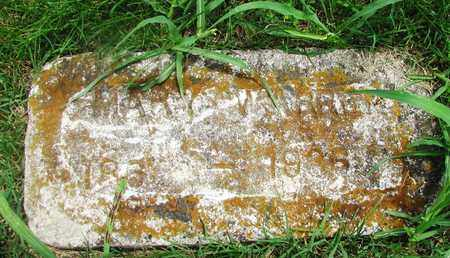 WARREN, MARY - Giles County, Tennessee | MARY WARREN - Tennessee Gravestone Photos