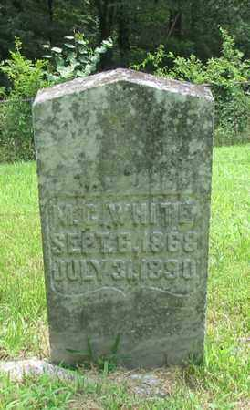 WHITE, M. G. - Giles County, Tennessee | M. G. WHITE - Tennessee Gravestone Photos