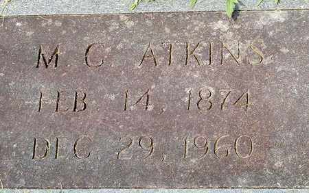 ATKINS, M. C. - Grainger County, Tennessee | M. C. ATKINS - Tennessee Gravestone Photos