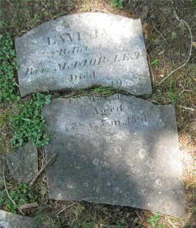 LEA, LAVINIA - Grainger County, Tennessee | LAVINIA LEA - Tennessee Gravestone Photos