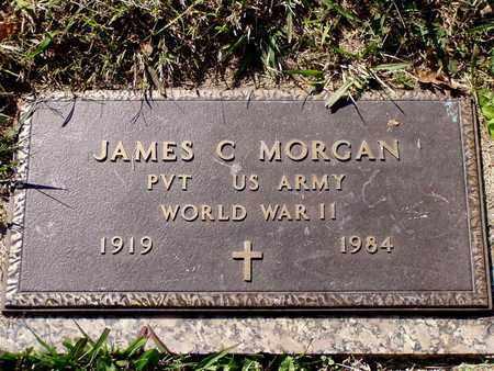 MORGAN  (VETERAN WWII), JAMES C - Grainger County, Tennessee   JAMES C MORGAN  (VETERAN WWII) - Tennessee Gravestone Photos