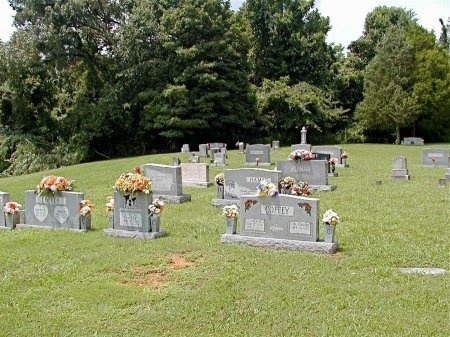 *NEAL OVERVIEW,  - Grainger County, Tennessee |  *NEAL OVERVIEW - Tennessee Gravestone Photos