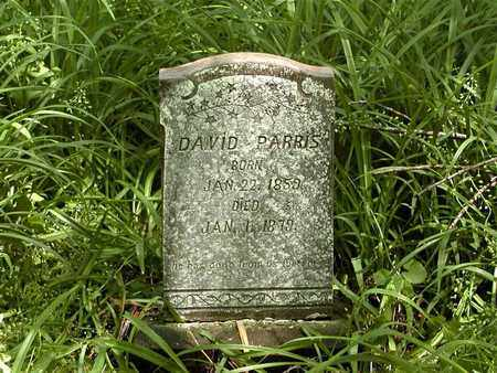 PARRIS, DAVID - Grainger County, Tennessee | DAVID PARRIS - Tennessee Gravestone Photos