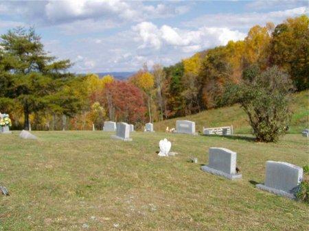*SINGLETON VIEW,  - Grainger County, Tennessee    *SINGLETON VIEW - Tennessee Gravestone Photos