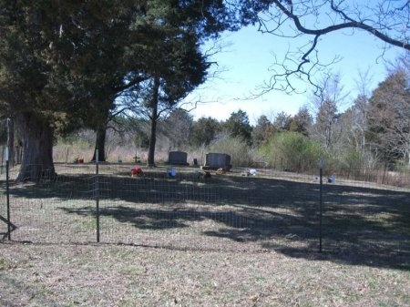 *CEMETERY VIEW,  - Greene County, Tennessee |  *CEMETERY VIEW - Tennessee Gravestone Photos