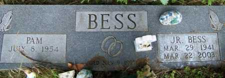BESS, LEO (JR.) - Grundy County, Tennessee | LEO (JR.) BESS - Tennessee Gravestone Photos