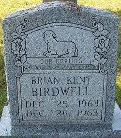 BIRDWELL, BRIAN KENT - Grundy County, Tennessee | BRIAN KENT BIRDWELL - Tennessee Gravestone Photos