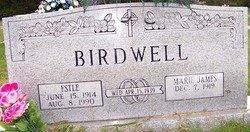 BIRDWELL, ESTLE - Grundy County, Tennessee   ESTLE BIRDWELL - Tennessee Gravestone Photos