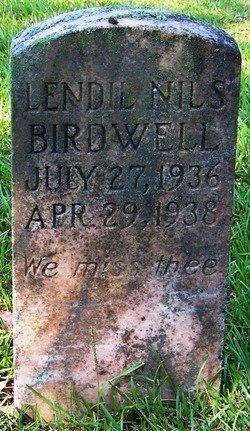 BIRDWELL, LENDIL NILS - Grundy County, Tennessee   LENDIL NILS BIRDWELL - Tennessee Gravestone Photos