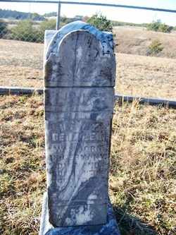 GEISSLER, HENRY - Grundy County, Tennessee | HENRY GEISSLER - Tennessee Gravestone Photos
