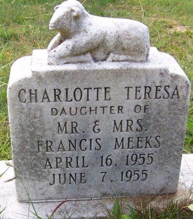 MEEKS, CHARLOTTE TERESA - Grundy County, Tennessee   CHARLOTTE TERESA MEEKS - Tennessee Gravestone Photos