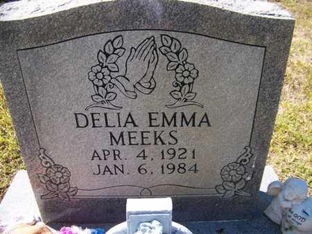 MEEKS, DELIA EMMA - Grundy County, Tennessee | DELIA EMMA MEEKS - Tennessee Gravestone Photos