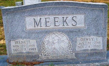 MEEKS, DEWEY LEE - Grundy County, Tennessee | DEWEY LEE MEEKS - Tennessee Gravestone Photos