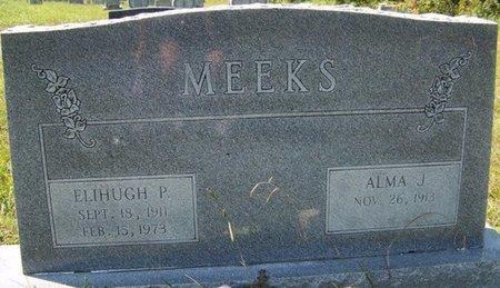 MEEKS, ELIHUGH P. - Grundy County, Tennessee | ELIHUGH P. MEEKS - Tennessee Gravestone Photos
