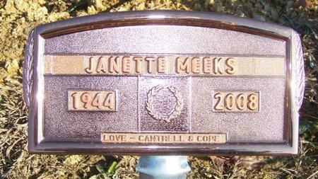 MEEKS, JANETTE - Grundy County, Tennessee   JANETTE MEEKS - Tennessee Gravestone Photos