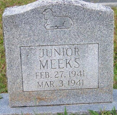 MEEKS, JUNIOR - Grundy County, Tennessee | JUNIOR MEEKS - Tennessee Gravestone Photos