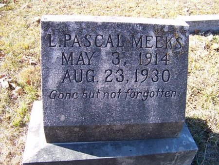 MEEKS, L. PASCAL - Grundy County, Tennessee   L. PASCAL MEEKS - Tennessee Gravestone Photos