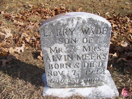 MEEKS, LARRY WADE - Grundy County, Tennessee   LARRY WADE MEEKS - Tennessee Gravestone Photos