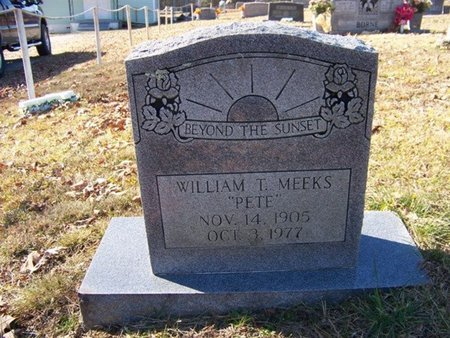 MEEKS, WILLIAM THOMAS - Grundy County, Tennessee | WILLIAM THOMAS MEEKS - Tennessee Gravestone Photos