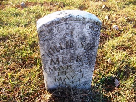 MEEKS, WILLIE SUE - Grundy County, Tennessee | WILLIE SUE MEEKS - Tennessee Gravestone Photos