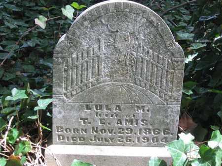 AMIS, LULA M. - Hamblen County, Tennessee | LULA M. AMIS - Tennessee Gravestone Photos