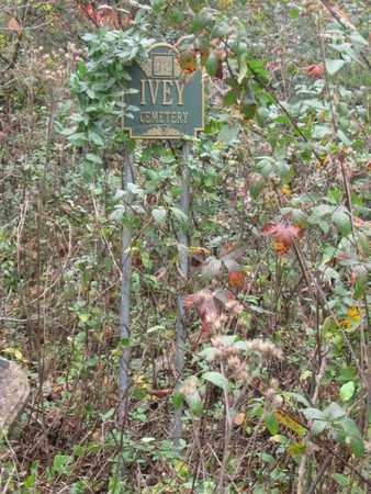 BALES, MOLLIE - Hamblen County, Tennessee | MOLLIE BALES - Tennessee Gravestone Photos