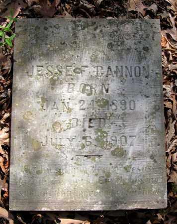 CANNON, JESSE F. - Hamblen County, Tennessee | JESSE F. CANNON - Tennessee Gravestone Photos